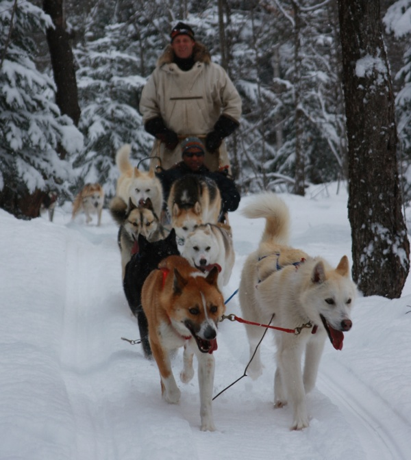 DogSledding_001